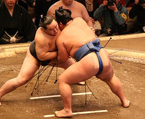 Sumo (font: http://upload.wikimedia.org/wikipedia/commons/thumb/a/ac/Asashoryu_fight_Jan08.JPG/300px-Asashoryu_fight_Jan08.JPG )